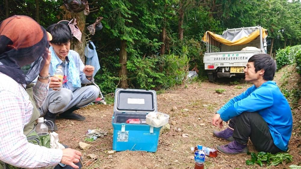 京都宇治・和束町の茶苅りの仕事(休憩中)の写真